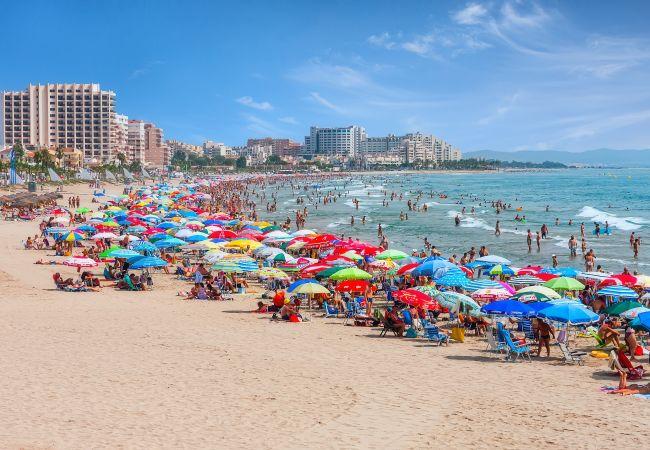 Apartamento en Malgrat de Mar - ROS HomeHolidaysRentals Decomar - Costa Barcelona