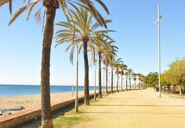 Apartamento en Pineda de Mar - OP HomeHolidaysRentals Millet- Costa Barcelona