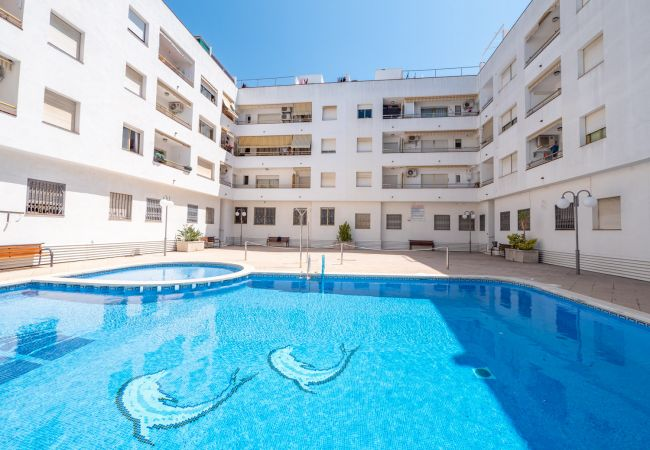 Apartament en Pineda de Mar - HomeHolidaysRentals Connor - Costa Barcelona