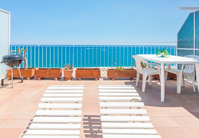 Apartment in Pineda de Mar - OP HomeHolidaysRentals Neila - Costa Barcelona